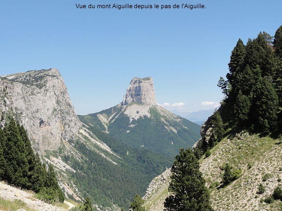 Vue du mont Aiguille depuis le pas de l Aiguille.