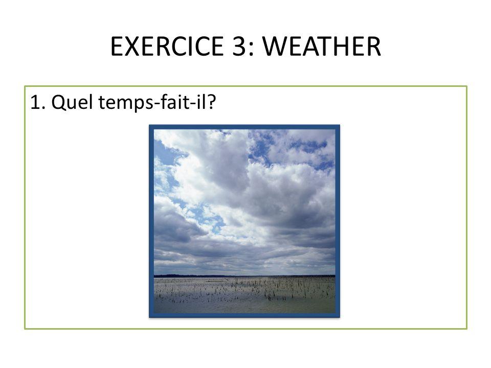EXERCICE 3: WEATHER 1. Quel temps-fait-il