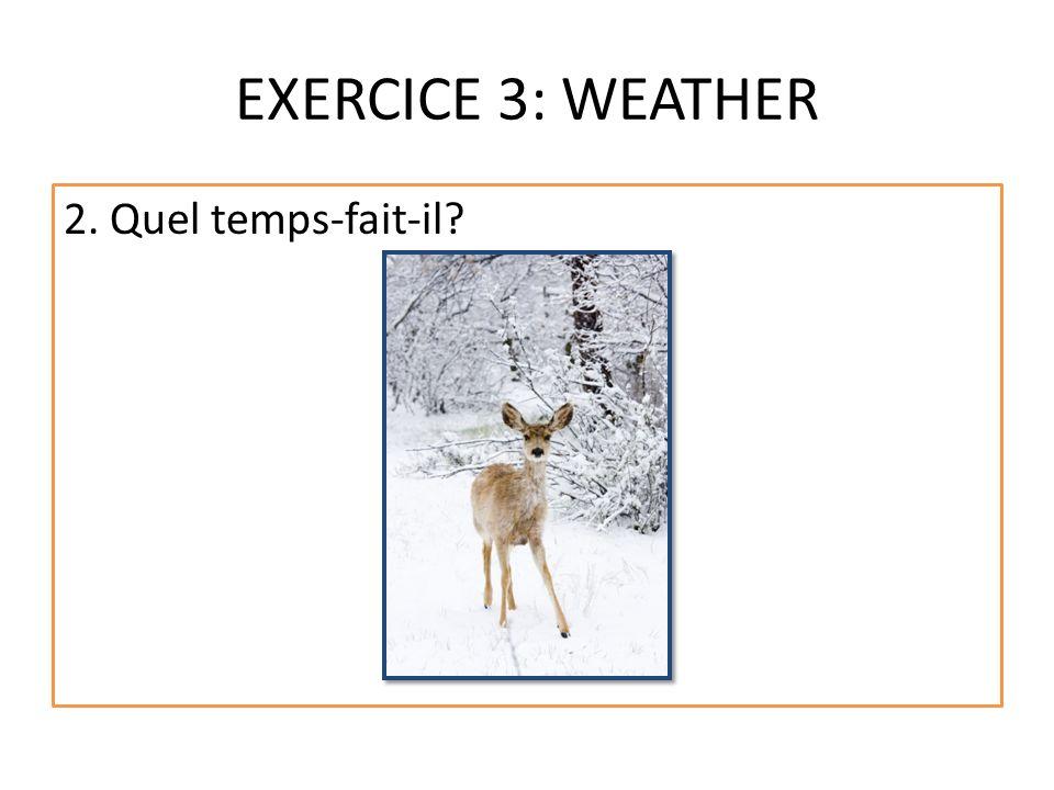 EXERCICE 3: WEATHER 2. Quel temps-fait-il