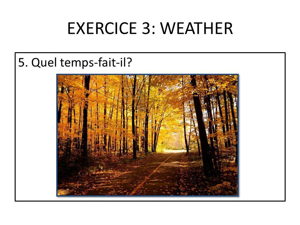 EXERCICE 3: WEATHER 5. Quel temps-fait-il