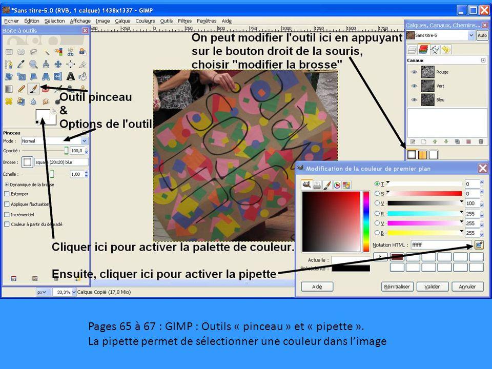 Pages 65 à 67 : GIMP : Outils « pinceau » et « pipette ».
