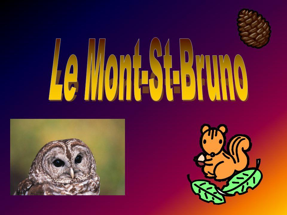 Le Mont-St-Bruno