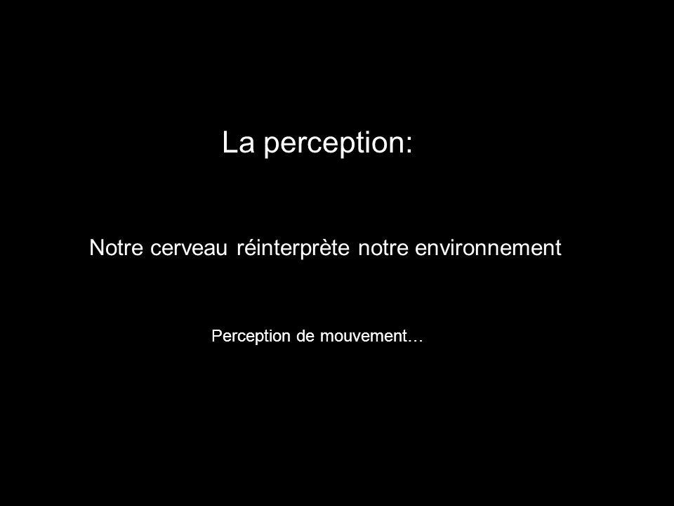 La perception: Notre cerveau réinterprète notre environnement