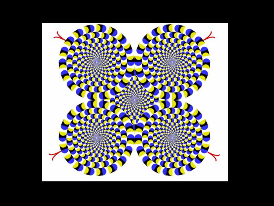 L image physique formée au fond de l oeil sur la rétine, analysée point par point, est transmise fidélement au cerveau sous forme de messages codés. Ceci est en principe pareil pour tous. Mais ce sont les zones visuelles du cerveau qui analysent ces signaux et nous donnent une représentation de l objet perçu. L interprétation qu en fait le cerveau peut parfois être ambiguë. Ces erreurs d interprétation sont des illusions d optique, qui ne sont pas perçues de la même façon par chacun d entre nous (nous n avons pas tous le même vécu , ni les mêmes images en mémoire)...