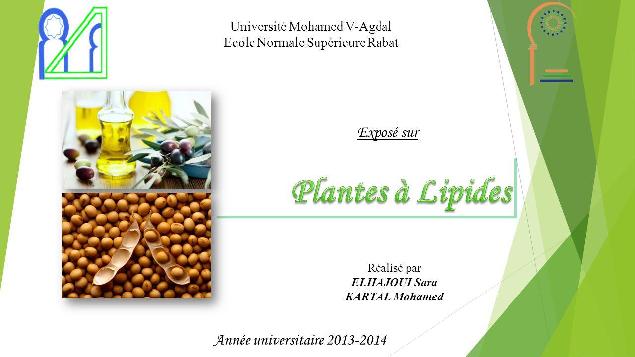 Plantes à Lipides Exposé sur Année universitaire 2013-2014