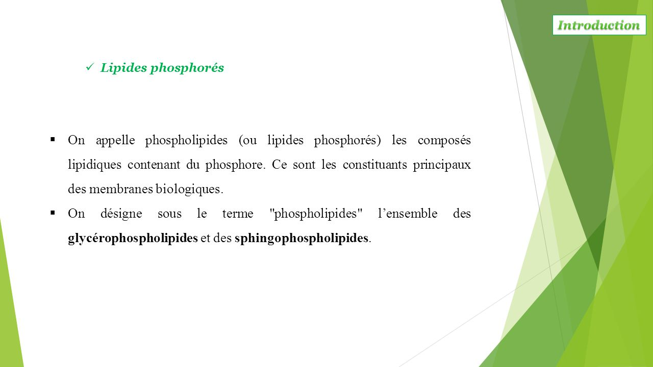 Introduction Lipides phosphorés.