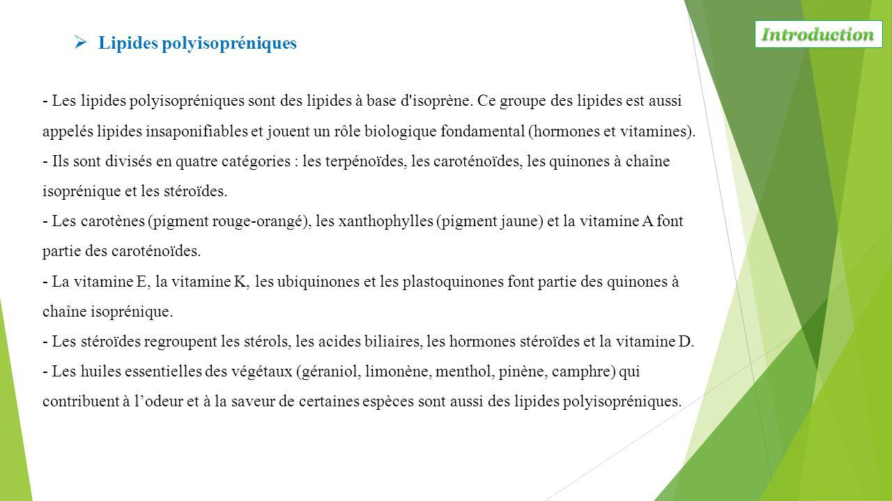 Lipides polyisopréniques