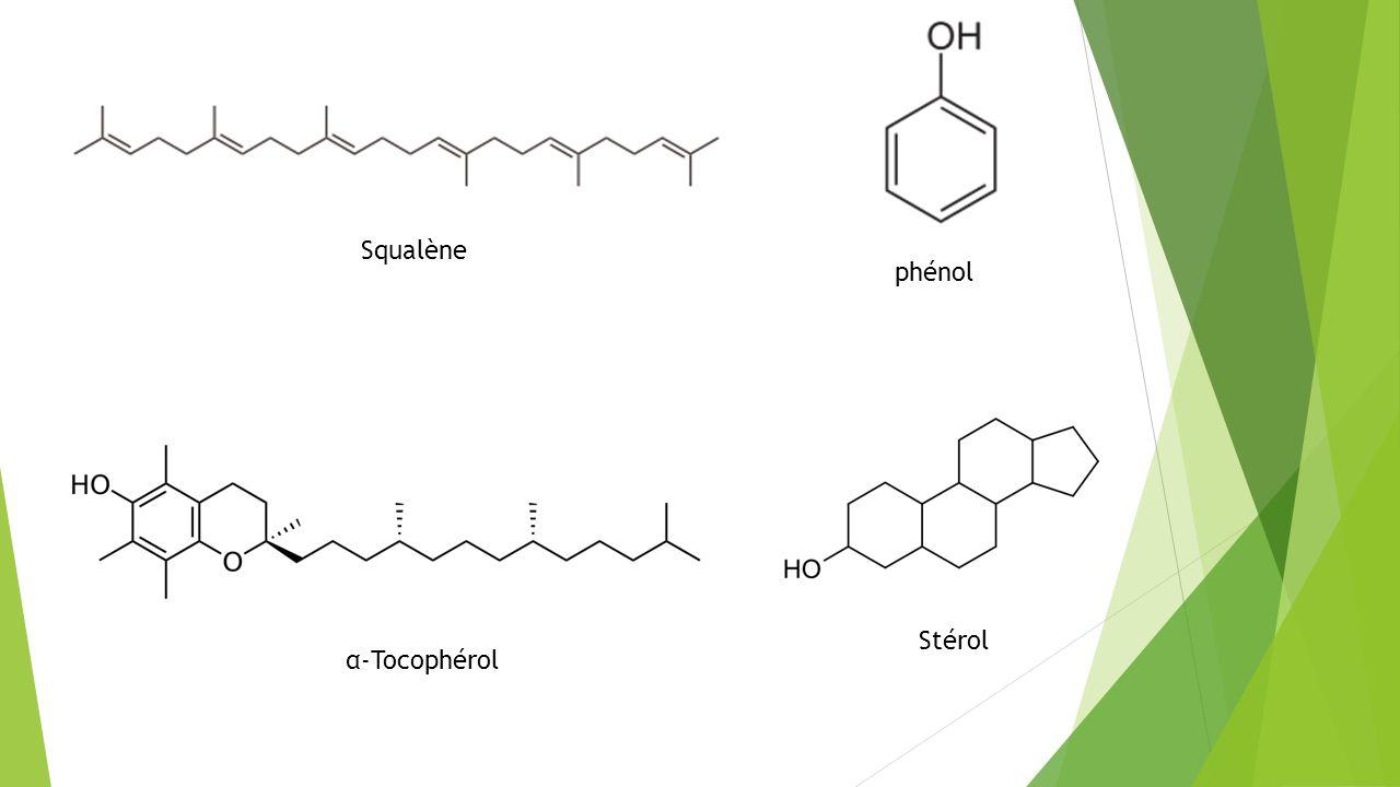 Squalène phénol Stérol α-Tocophérol