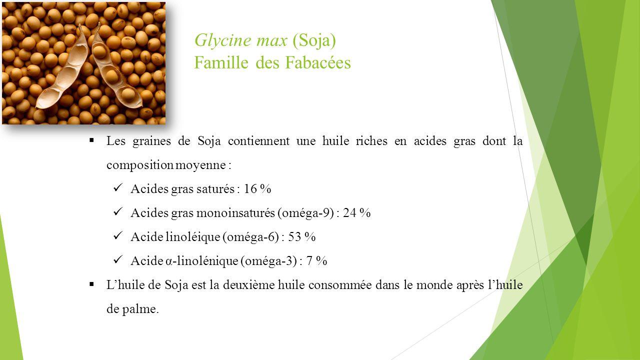 Glycine max (Soja) Famille des Fabacées
