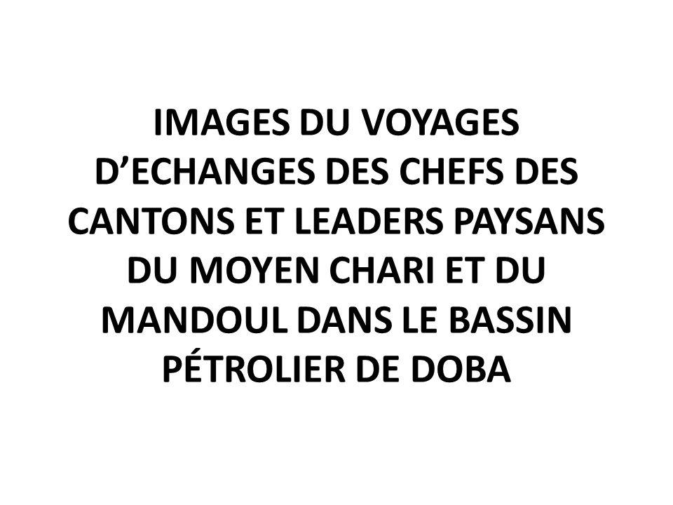IMAGES DU VOYAGES D'ECHANGES DES CHEFS DES CANTONS ET LEADERS PAYSANS DU MOYEN CHARI ET DU MANDOUL DANS LE BASSIN PÉTROLIER DE DOBA