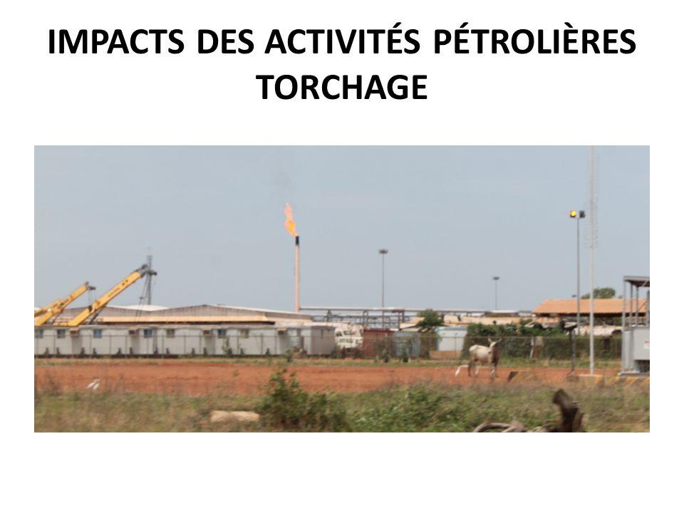 IMPACTS DES ACTIVITÉS PÉTROLIÈRES TORCHAGE