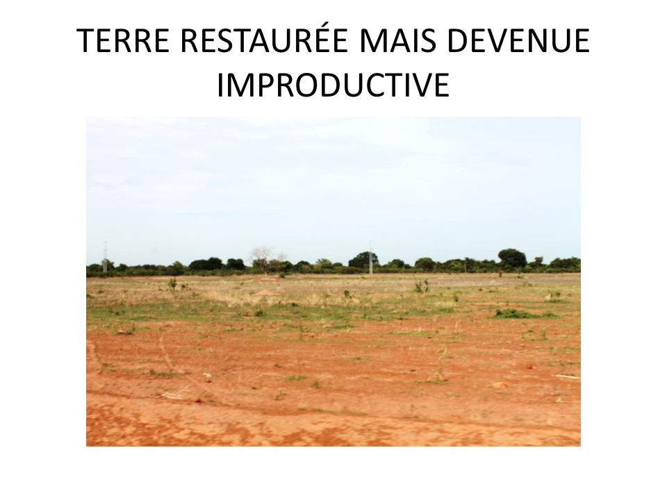 TERRE RESTAURÉE MAIS DEVENUE IMPRODUCTIVE