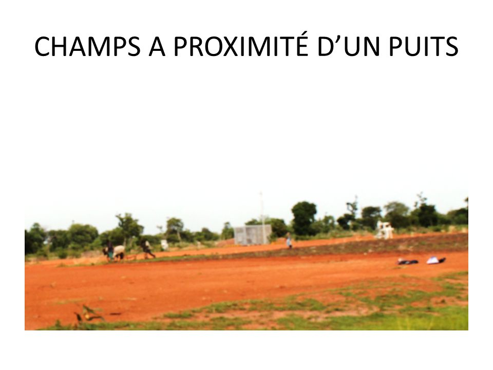 CHAMPS A PROXIMITÉ D'UN PUITS