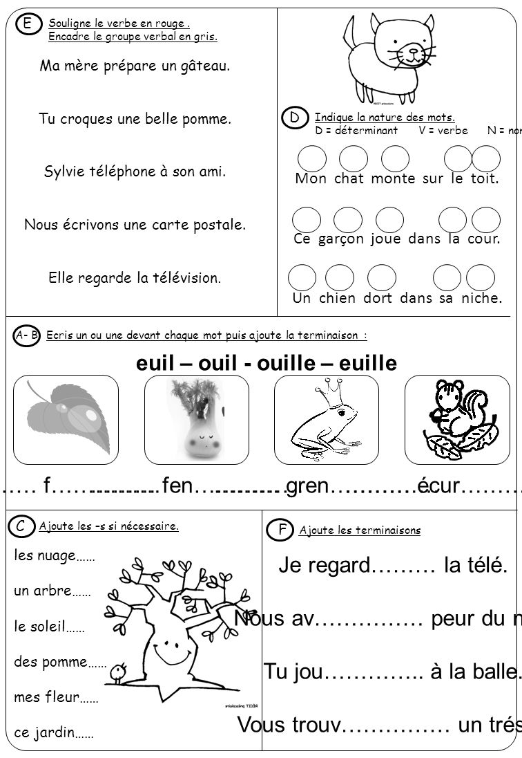 euil – ouil - ouille – euille