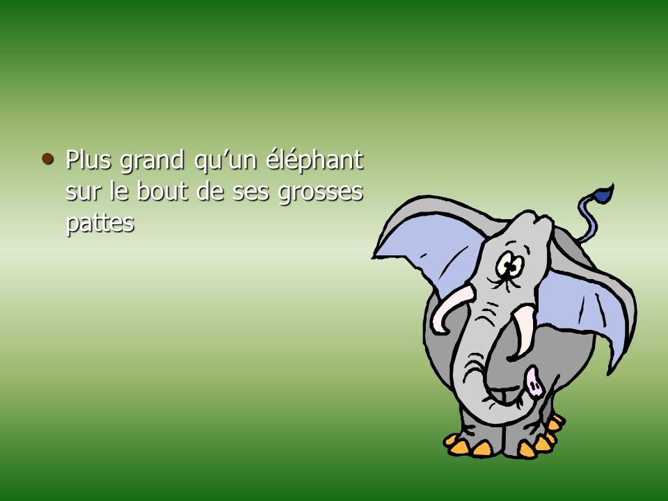 Plus grand qu'un éléphant sur le bout de ses grosses pattes