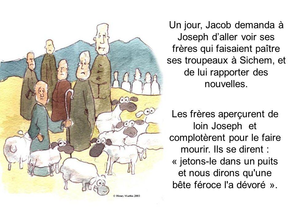 Un jour, Jacob demanda à Joseph d'aller voir ses frères qui faisaient paître ses troupeaux à Sichem, et de lui rapporter des nouvelles.