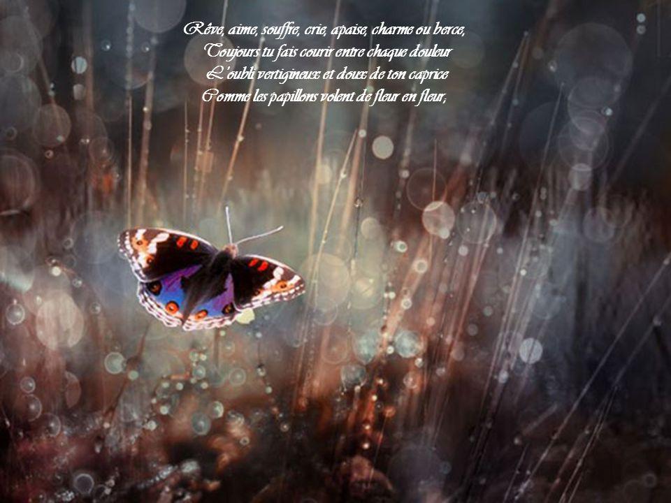 Rêve, aime, souffre, crie, apaise, charme ou berce,