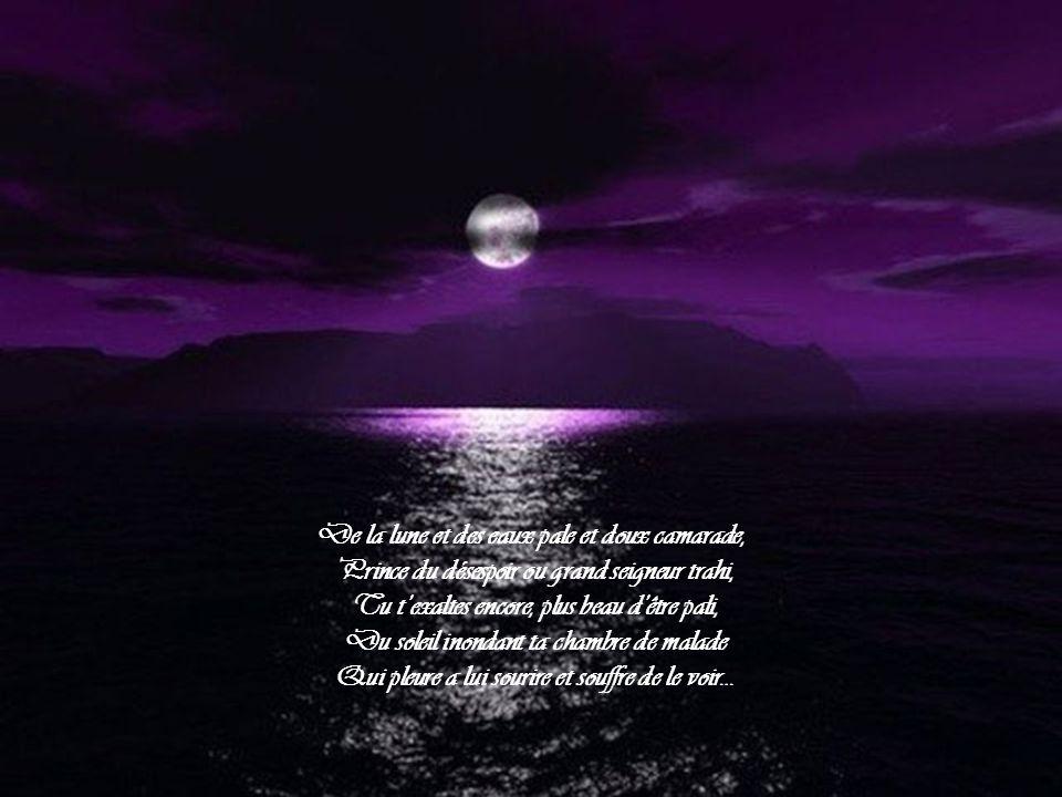 De la lune et des eaux pale et doux camarade,
