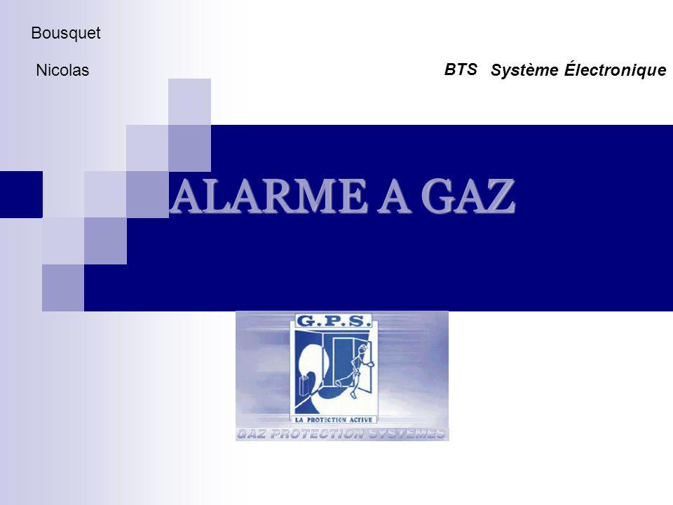 Bousquet Nicolas Système Électronique BTS ALARME A GAZ