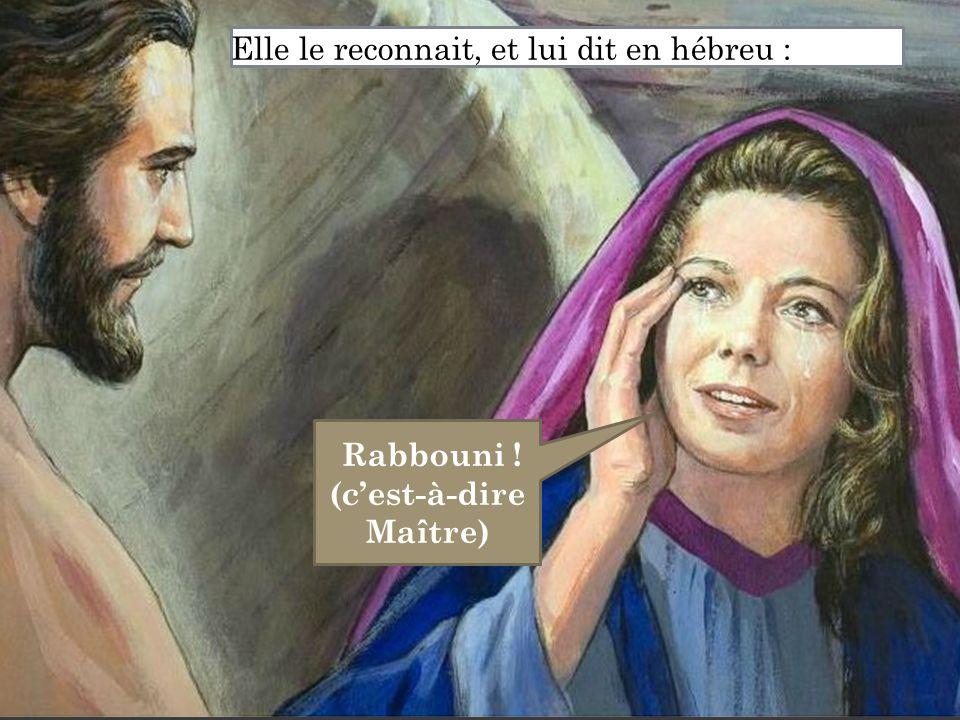 Rabbouni ! (c'est-à-dire Maître)