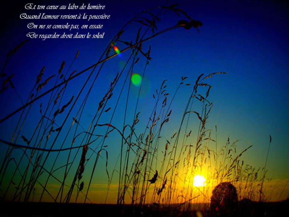 Et ton cœur au labo de lumière Quand l amour revient à la poussière