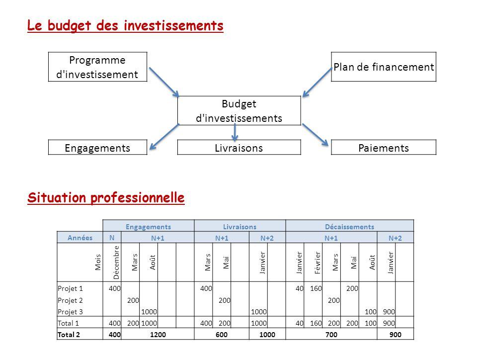 Le budget des investissements Situation professionnelle