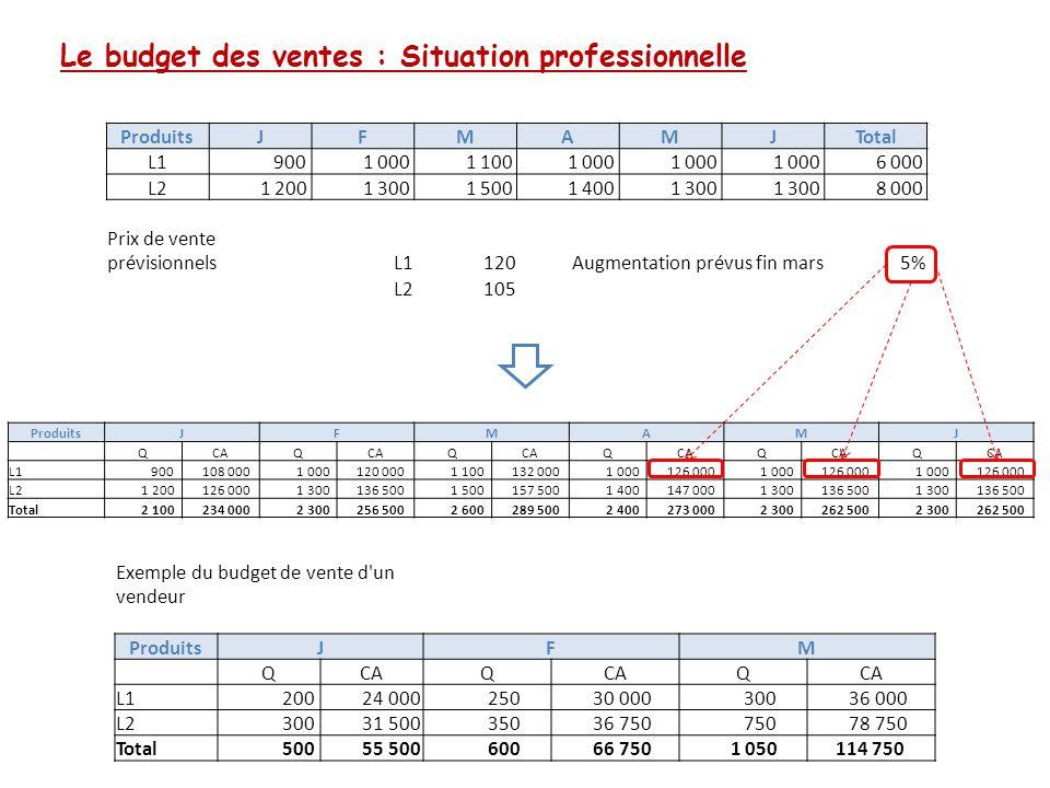 Le budget des ventes : Situation professionnelle