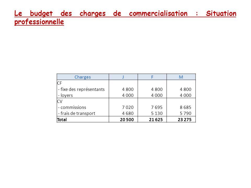 Le budget des charges de commercialisation : Situation professionnelle