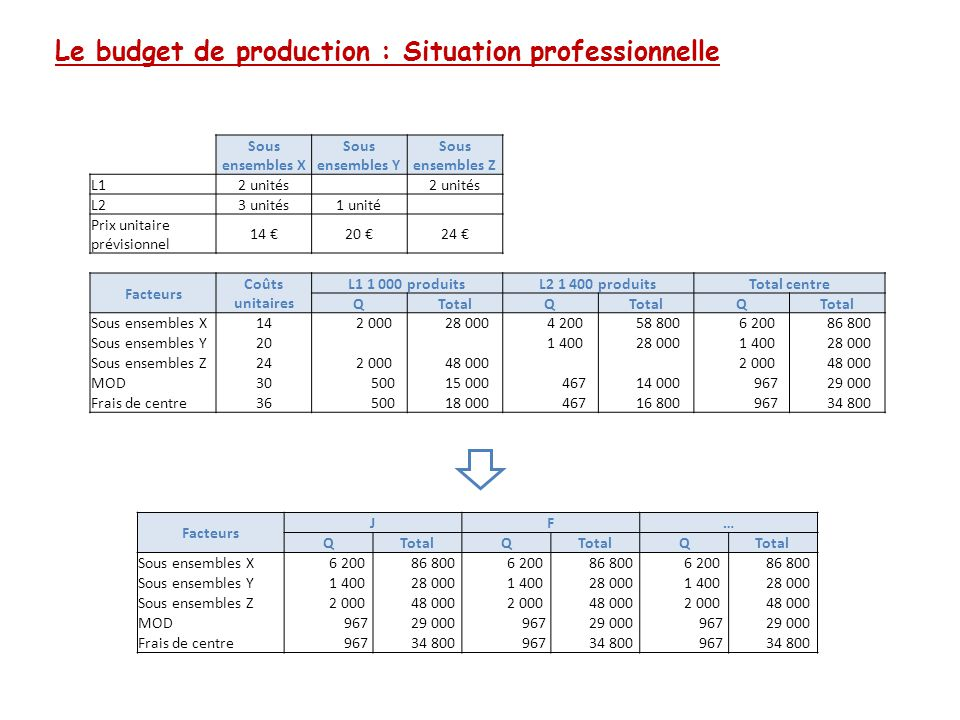 Le budget de production : Situation professionnelle