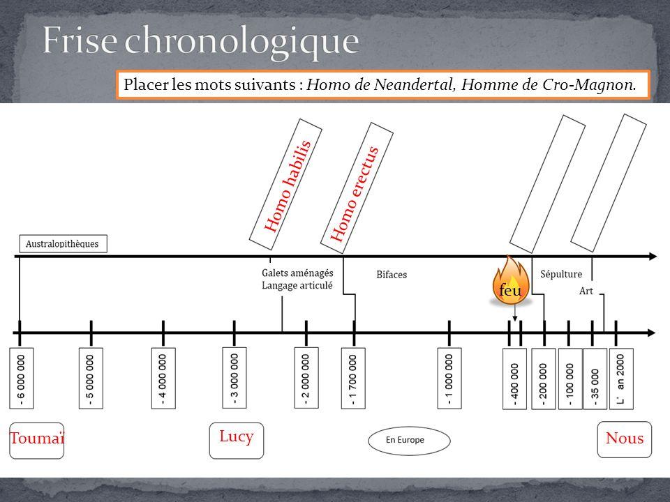 Frise chronologique Placer les mots suivants : Homo de Neandertal, Homme de Cro-Magnon. Homo habilis.