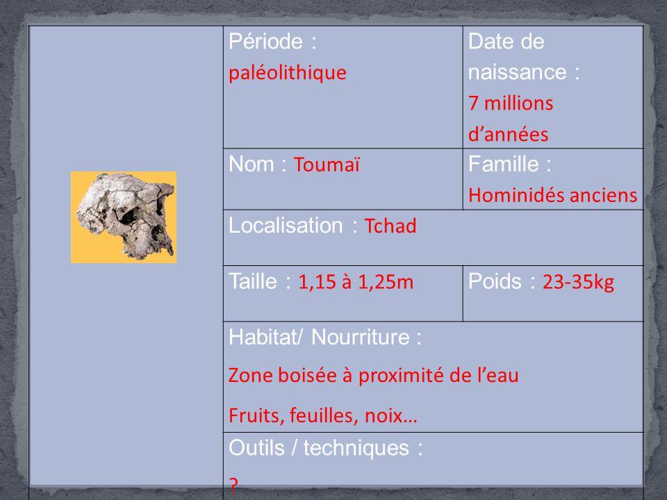 Famille : Hominidés anciens Localisation : Tchad Taille : 1,15 à 1,25m