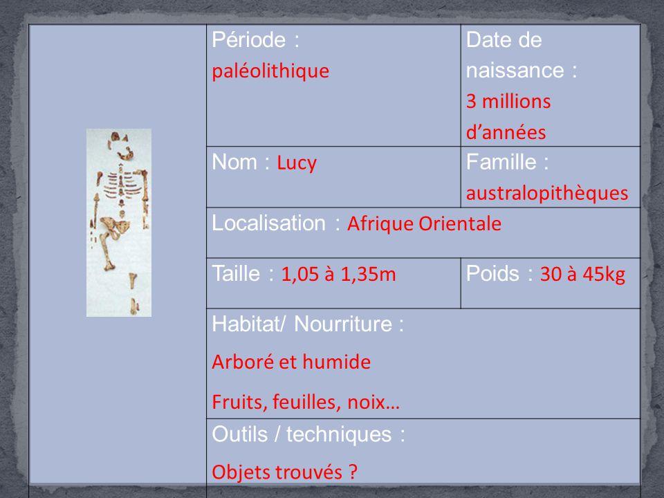 Famille : australopithèques Localisation : Afrique Orientale