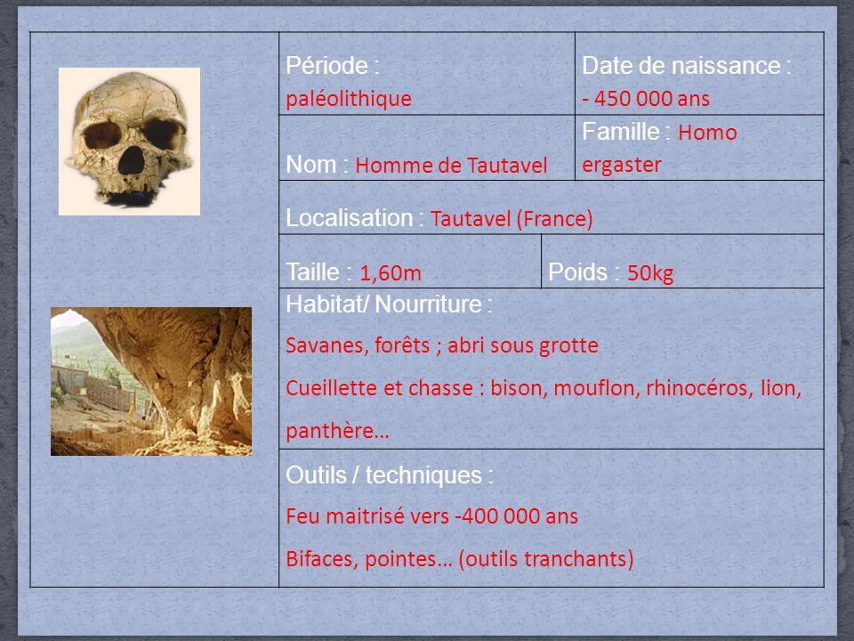 Famille : Homo ergaster
