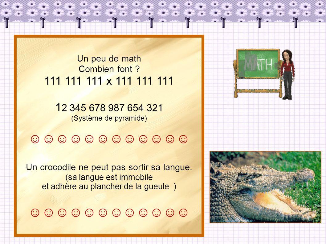 Un peu de math Combien font 111 111 111 x 111 111 111. 12 345 678 987 654 321. (Système de pyramide)
