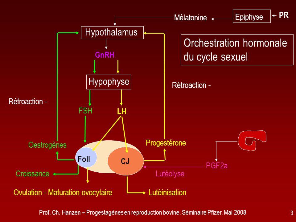 Orchestration hormonale du cycle sexuel