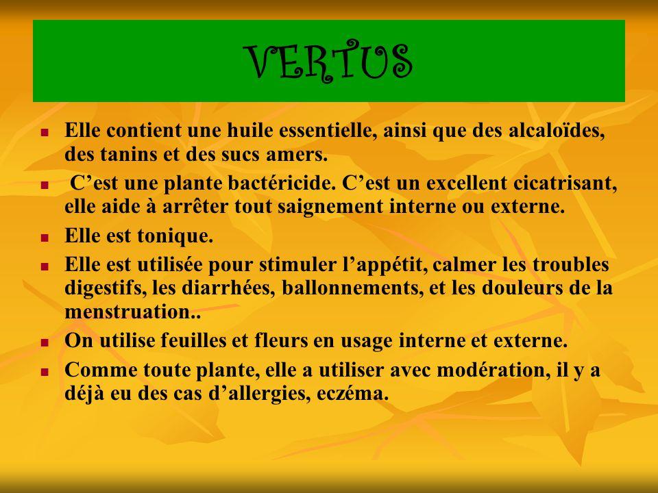 VERTUS Elle contient une huile essentielle, ainsi que des alcaloïdes, des tanins et des sucs amers.
