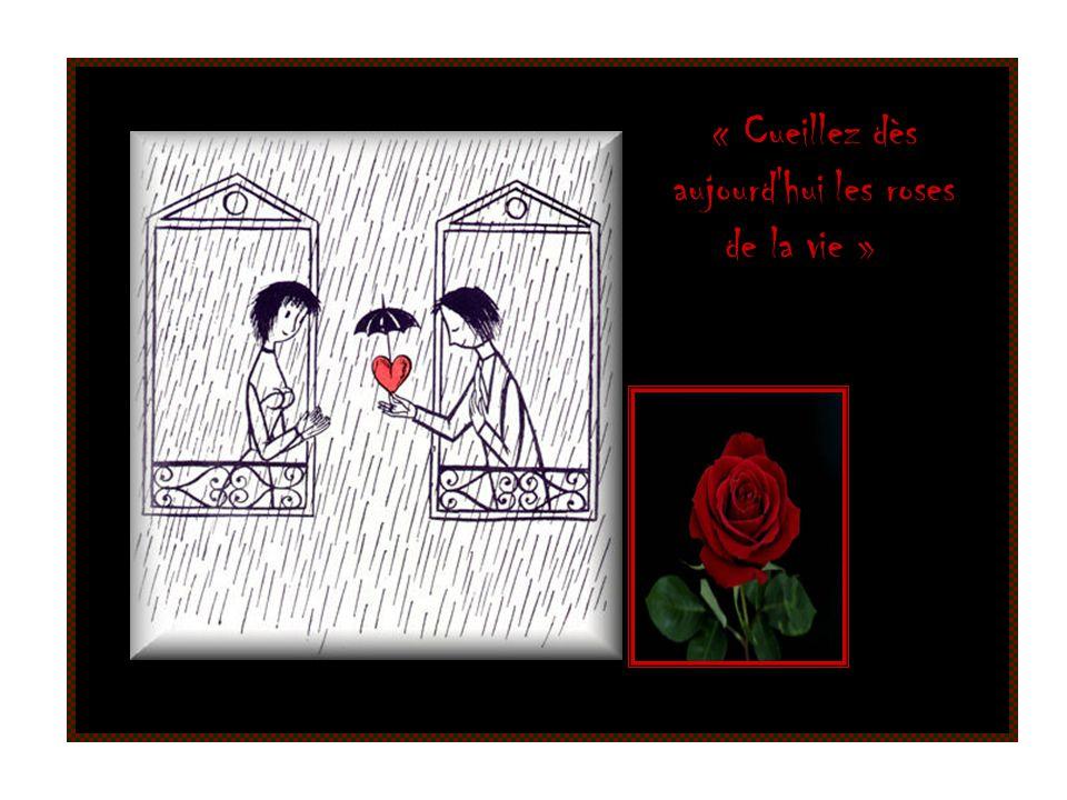 « Cueillez dès aujourd hui les roses de la vie »
