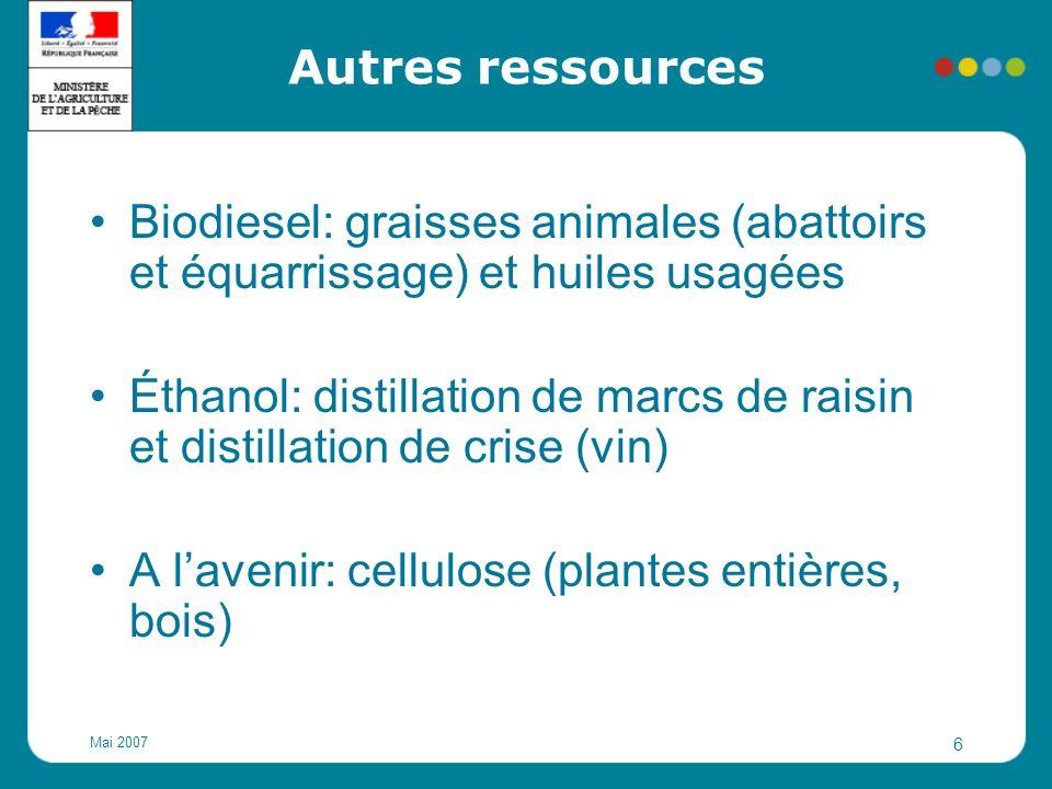 A l'avenir: cellulose (plantes entières, bois)