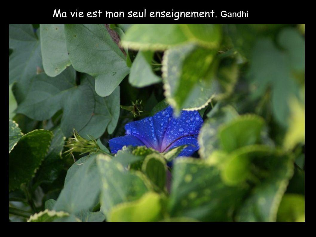 Ma vie est mon seul enseignement. Gandhi