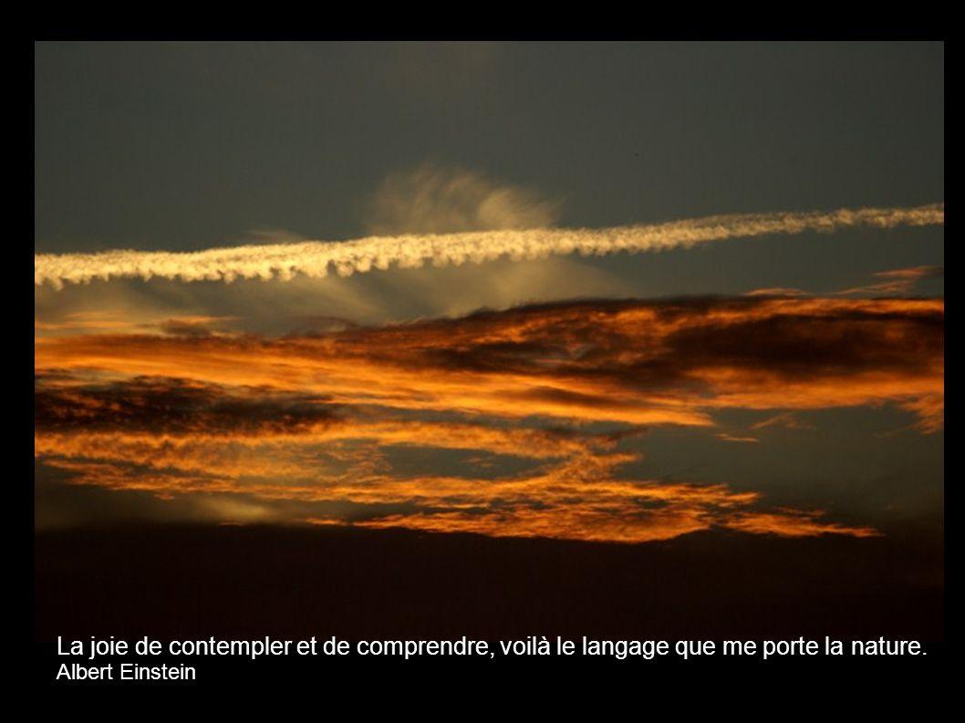La joie de contempler et de comprendre, voilà le langage que me porte la nature.