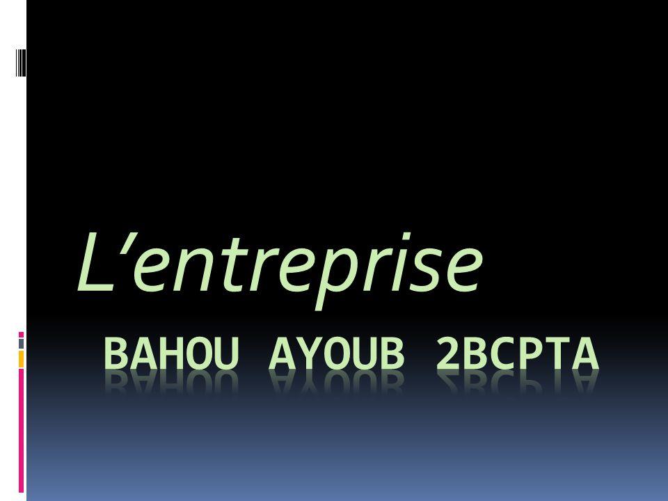 L'entreprise Bahou Ayoub 2bcpta