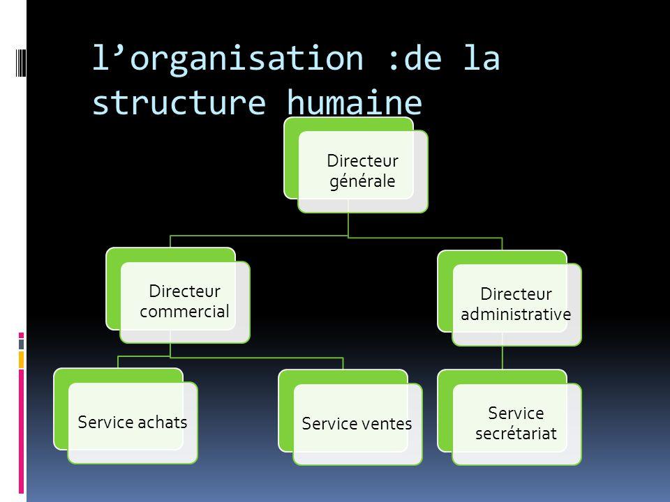l'organisation :de la structure humaine