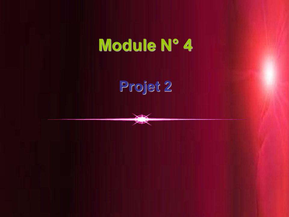 Module N° 4 Projet 2