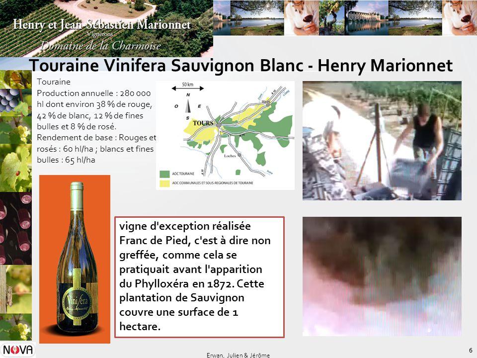 Touraine Vinifera Sauvignon Blanc - Henry Marionnet