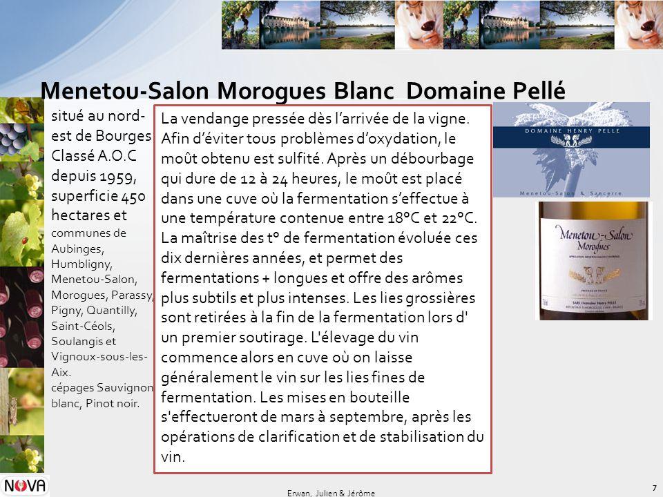 Menetou-Salon Morogues Blanc Domaine Pellé