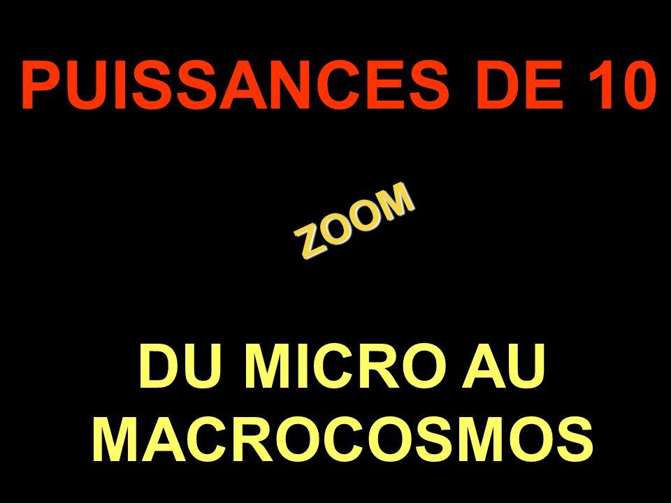 DU MICRO AU MACROCOSMOS