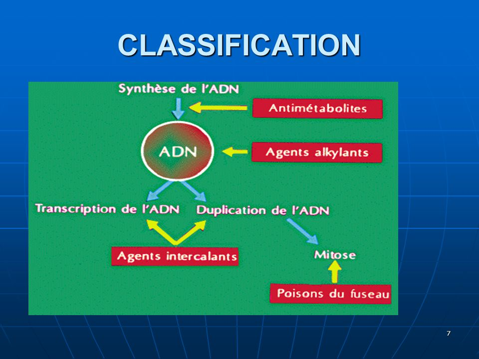 CLASSIFICATION 7