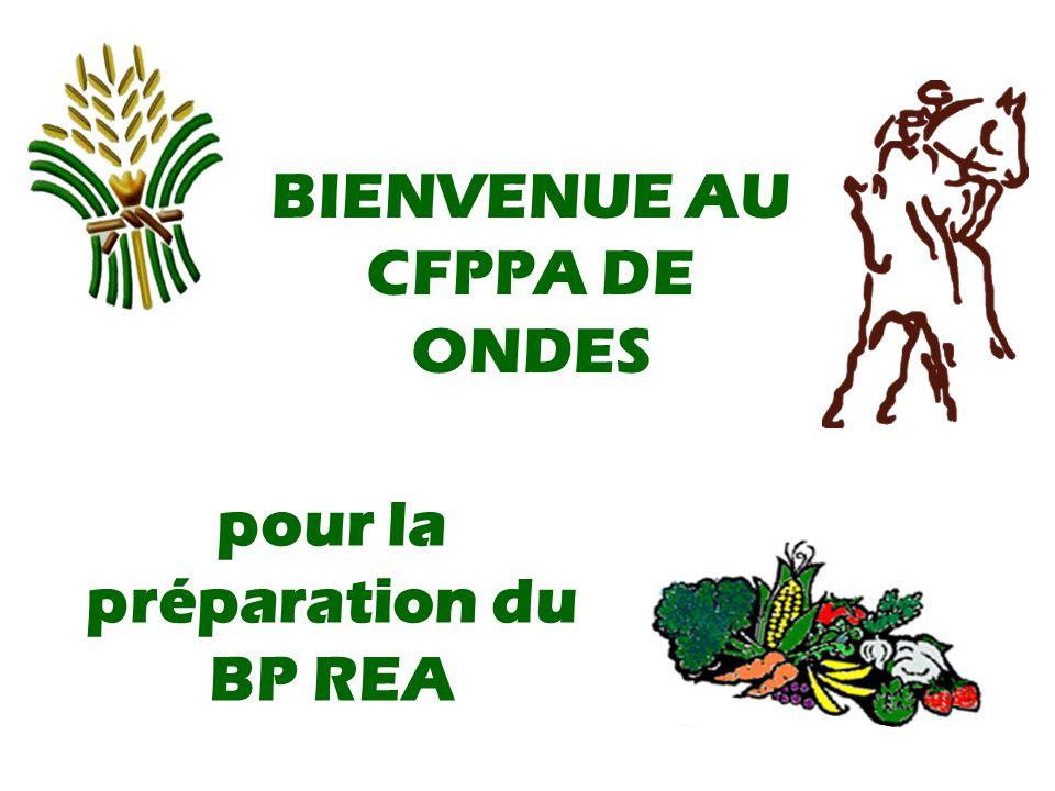 pour la préparation du BP REA