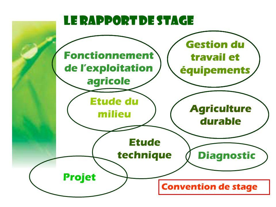 LE RAPPORT DE STAGE Gestion du travail et équipements