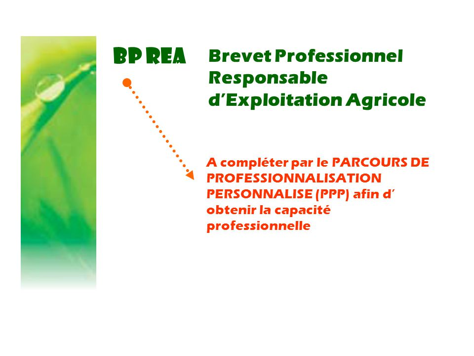 BP REA Brevet Professionnel Responsable d'Exploitation Agricole